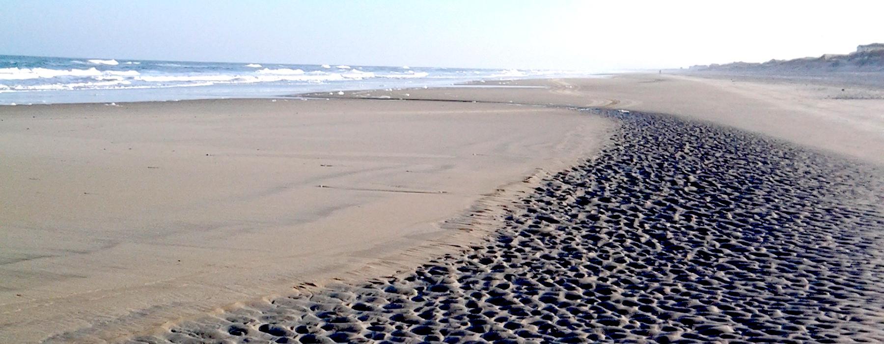 Low Tide Carova